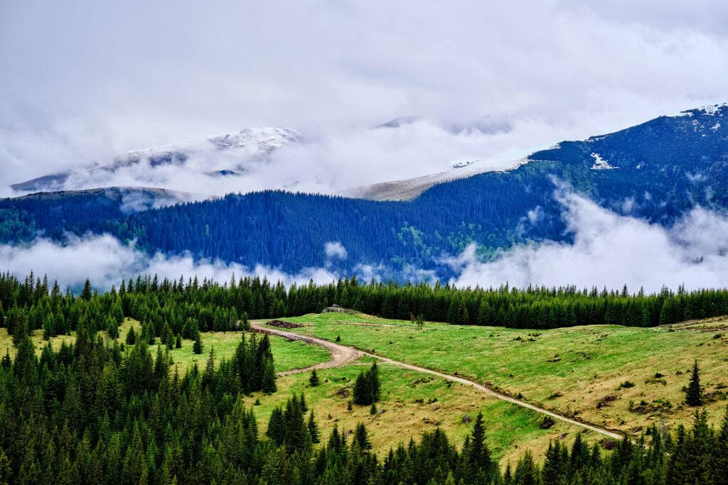 Parang Mountains - Wild Mountains of Romania 16