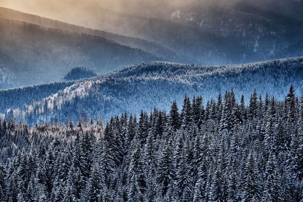 Parang Mountains - Wild Mountains of Romania 17