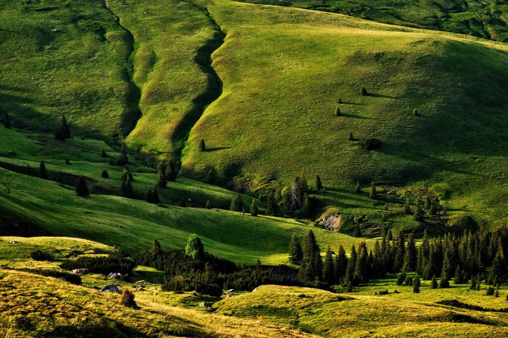 Parang Mountains - Wild Mountains of Romania 21