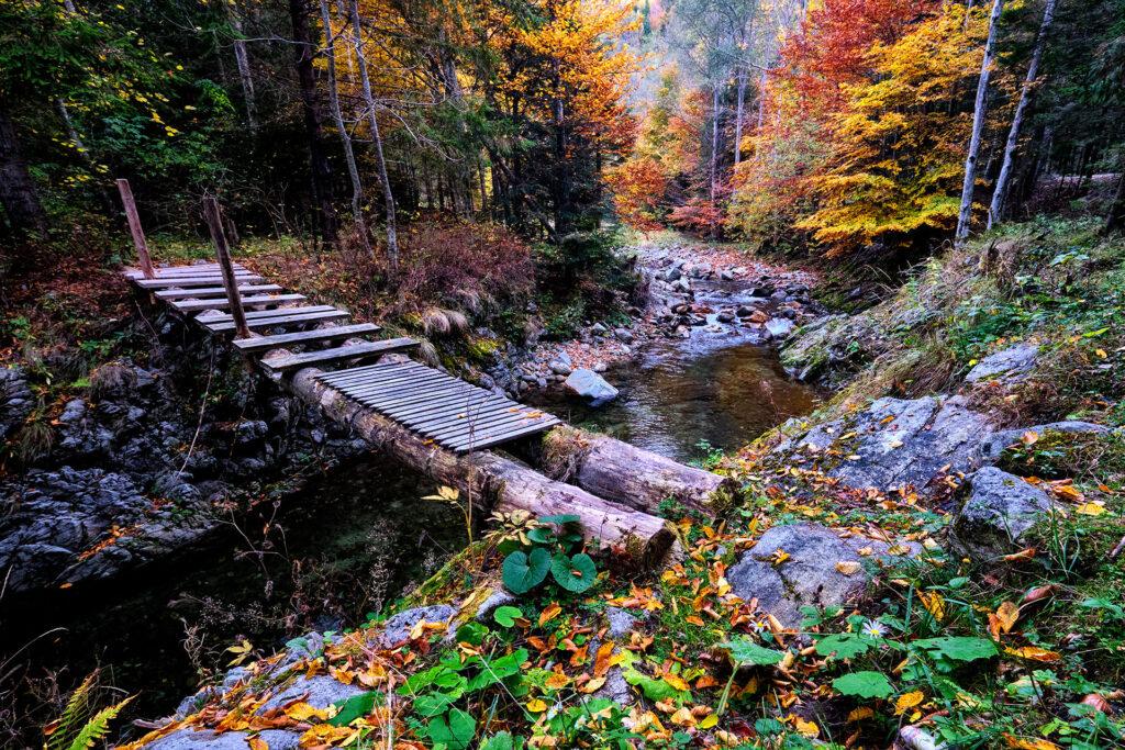 Oltet Valley Romania 03