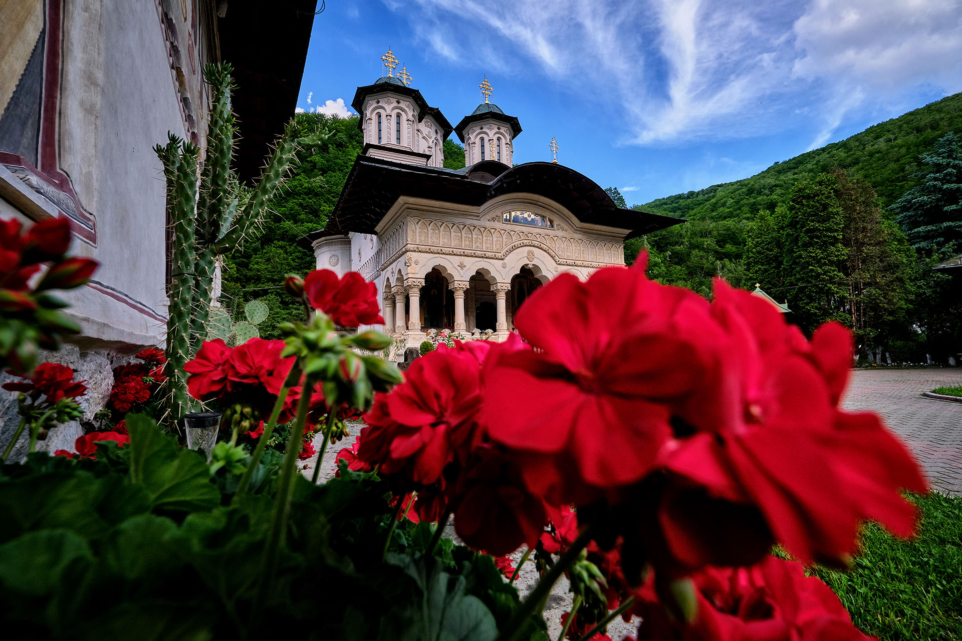 Lainici Monastery Romania 2