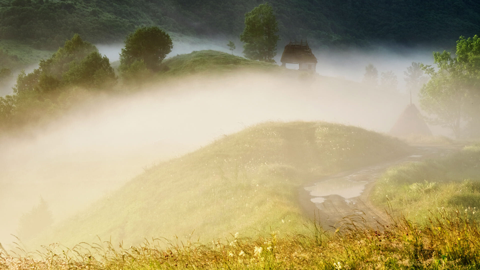 Dumesti Village - Magical Countryside of Romania